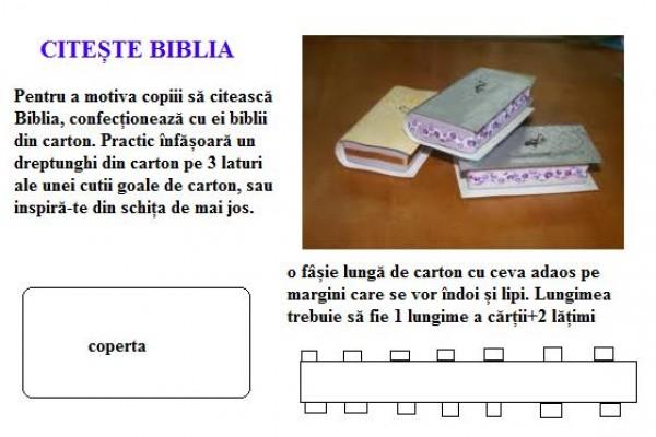 biblii-carton015AFE8B-628F-2EA9-C3EA-C0542FE581C7.jpg