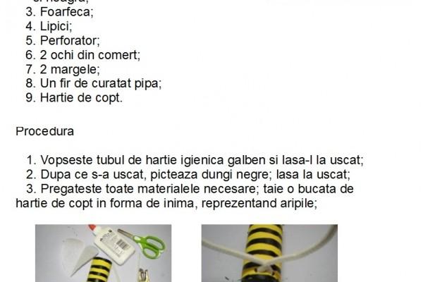 albina3970679E-3634-BC9C-EF5C-A0F6226D4ECF.jpg